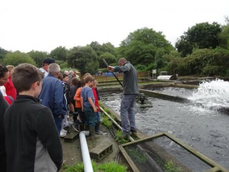 visite à la ferme à la pisciculture de pont kerinec 2015