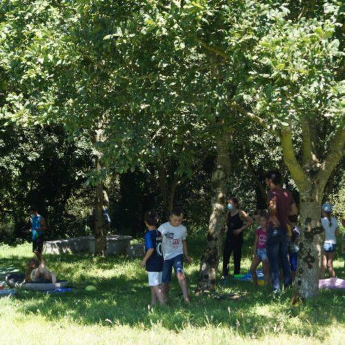 activité du centre de loisirs à la vallée du Ham