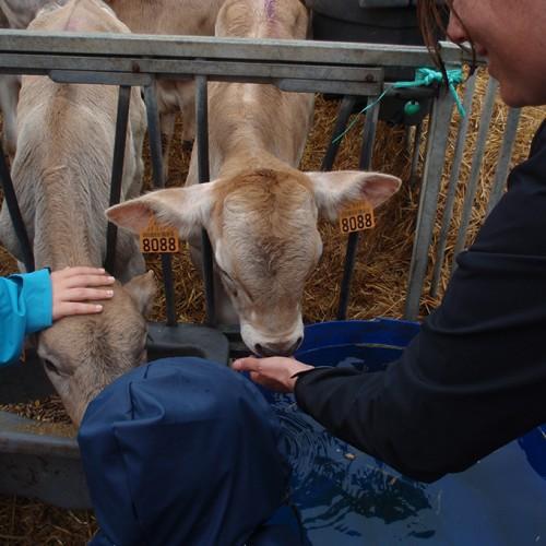 Visite à la ferme 2015